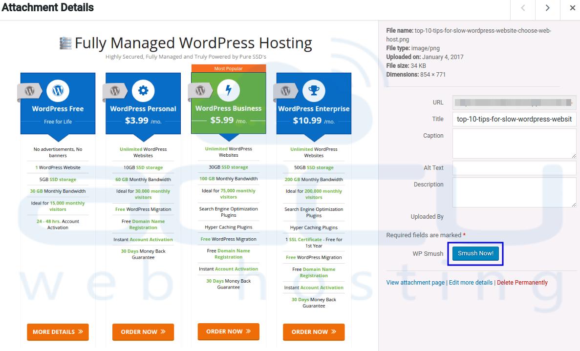 10 Effective and Easy Ways to Speed up WordPress Site Window