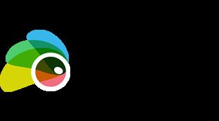Subrion logo
