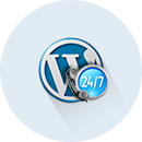 AccuWeb Hosting Skilled WordPress Technicians