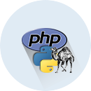 We will install PHP & PYTHON on your SSD Linux VPS